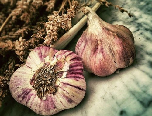 Garlic is Highly Nutritious